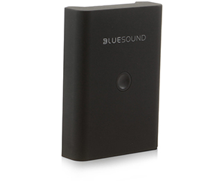 Bluseaound Battery For Pulse Flex